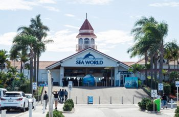 Sea World Slowly Losing Local Business